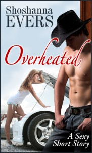 Amazon Erotica Bestseller, Overheated