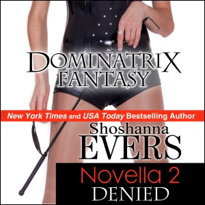 Dominatrix3audio